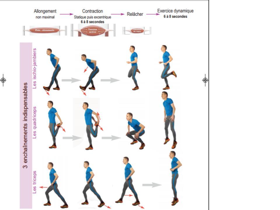 Etirements activo-dynamiques